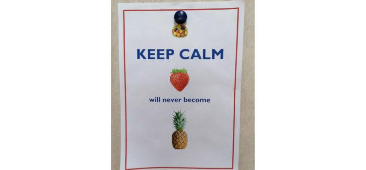 Een aardbei wordt geen ananas. Waarom mensen niet veranderen.
